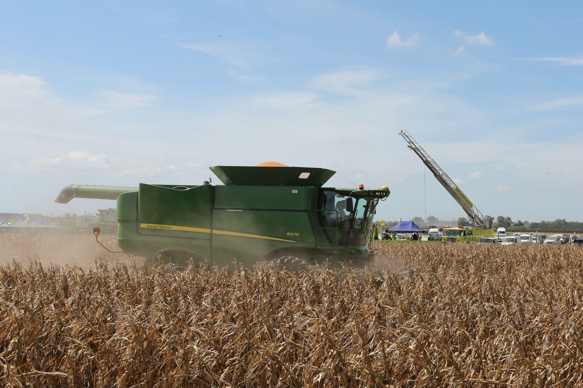 El agro y el mercado de capitales: instrumentos útiles para el sector