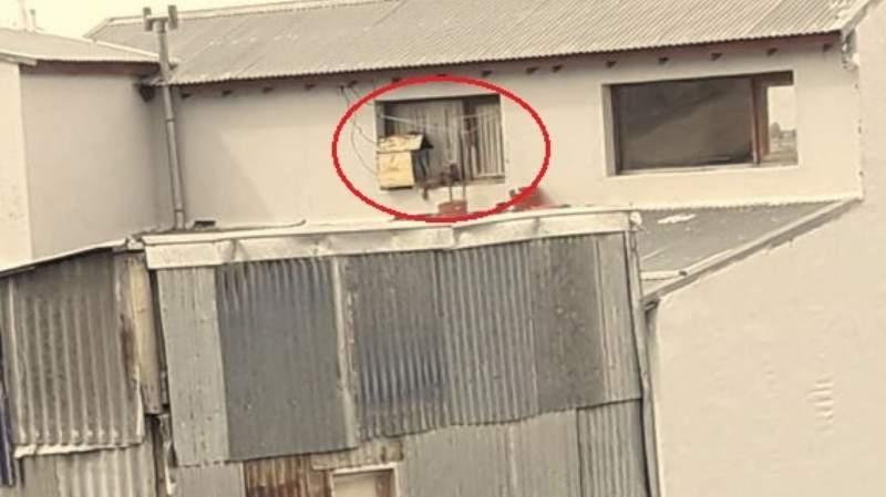 Zoonosis secuestró el perro que vivía en una ventana sobre Kuanip