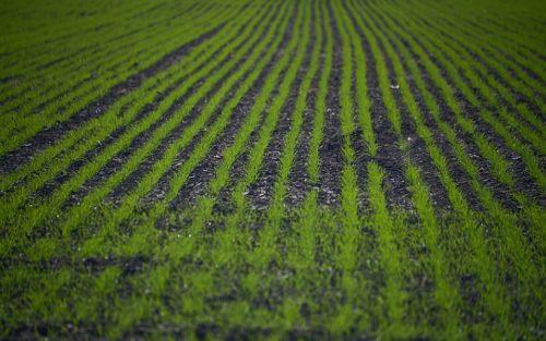 Presentan la metodología de Prospectiva Agrícola 2030